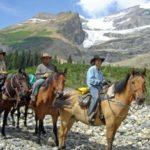 bc horse rental