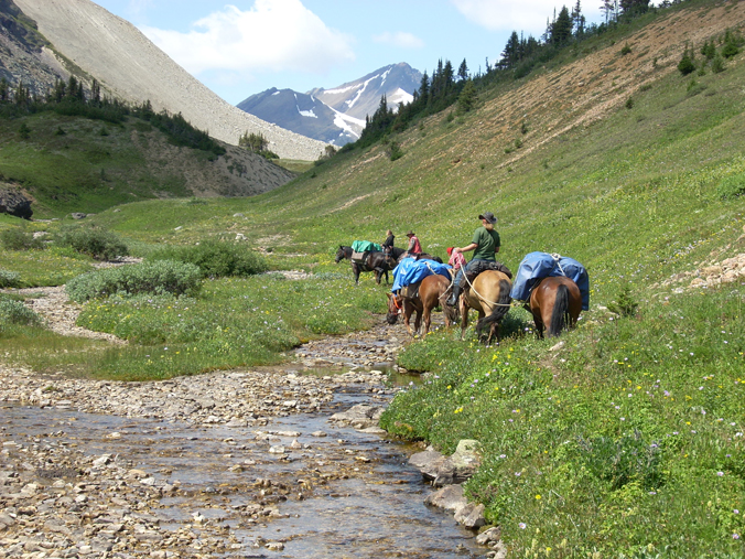Ladies Trail Riding the Canadian Rockies