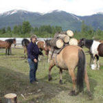 horse outfitter jobs