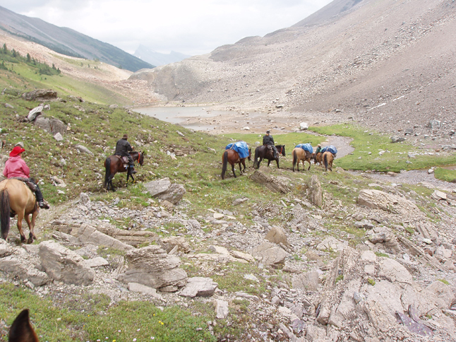 Rocky Trails, Horses and Hitches