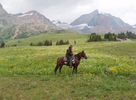 Willmore Wilderness trail riding